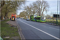 TL4558 : Victoria Avenue by N Chadwick