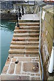 SX4853 : The Mayflower Steps by N Chadwick