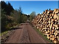 NS3383 : Forestry track and log stacks by Lairich Rig