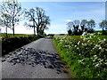 H4770 : Crevenagh Road by Kenneth  Allen