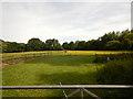 SU8971 : Field near Winkfield Row by James Emmans