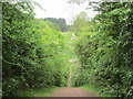TL0038 : Steep path on the Marston Vale Timberland Trail by Peter