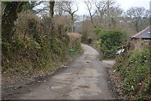 SX4861 : Coombe Lane by N Chadwick