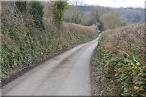 SX4761 : Coombe Lane by N Chadwick