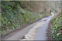 SX4760 : Coombe Lane by N Chadwick