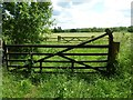 SP3633 : Double gates by Philip Halling