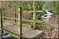 SX0069 : Bridge and stream, Hustyn Wood by Derek Harper