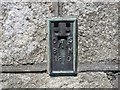 SW5430 : Ordnance Survey Flush Bracket 1810 by Peter Wood