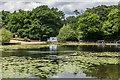 TQ4164 : Keston Ponds by Ian Capper