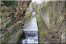 SX4760 : Tamerton Stream by N Chadwick