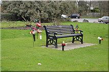 SX4660 : Memorial Bench, Tamerton Foliot by N Chadwick