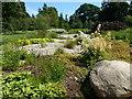SP9632 : Rock garden at Woburn Abbey by Richard Humphrey