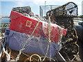 NU2232 : Coastal Northumberland : Caught In The Net : Week 25