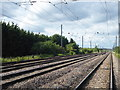 TL1942 : The East Coast Main Line seen from Holmegreen Level Crossing by Marathon