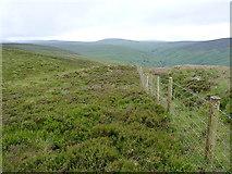 SH9522 : Fenceline above Fridd Fawr by Richard Law