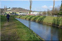 SX5156 : River Plym by N Chadwick