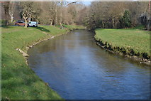 SX5157 : River Plym by N Chadwick