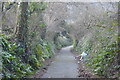 SX5058 : Footpath in Estover by N Chadwick