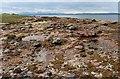 NS1659 : Intertidal rock and shingle near Stinking Bay : Week 28