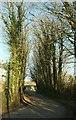 SX0975 : Trelank Barn by Derek Harper