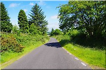 O0721 : The L7642 road near Ballinascorney Upper by P L Chadwick