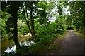 SX0169 : Cornwall : Camel Trail by Lewis Clarke