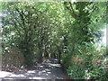 SW7230 : Minor road, Trewardreva  by JThomas