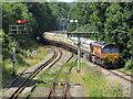ST2986 : Railtour at Park Junction : Week 31