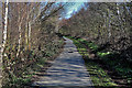 SE3807 : Trans Pennine Trail by Tom Curtis
