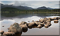NH9509 : Stones at the shoreline in Loch Morlich : Week 32