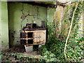 H5355 : Ruined farmhouse, Latbeg (interior -1) by Kenneth  Allen