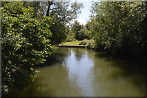 SP5204 : Weirs Mill Stream by N Chadwick