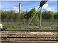 SU5191 : View from a Reading-Swindon train - screening for Didcot power station by Nigel Thompson