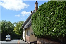 TL5136 : Thatched cottage, Wendens Ambo by N Chadwick