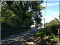 SJ3572 : Lane at Woodbank near Pits Farm by Rob Purvis