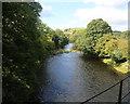 SJ1208 : Afon Banwy from railway bridge by John Firth