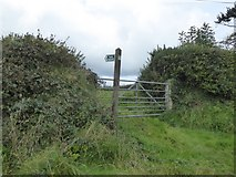 SX5495 : Footpath to Maddaford from Southcott by David Smith