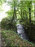SX5594 : Hookmoor Brook by David Smith