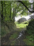 SX5695 : Old Nissen hut on a farm at Hilltown by David Smith