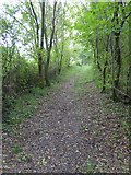 SS5402 : Bridleway south of Essworthy by David Smith