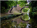 SK0716 : Canal and bridge near Armitage, Staffordshire by Roger  Kidd