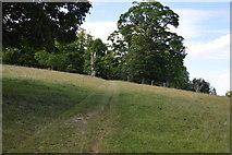 SU8695 : Track, Hughenden Park by N Chadwick