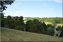 SU8695 : Hughenden Valley by N Chadwick