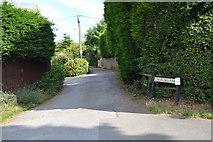 SU8596 : Church Lane by N Chadwick