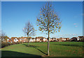 TQ0278 : A Small Park by Grasholm Way by Des Blenkinsopp