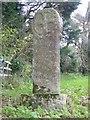 SW7236 : Wayside cross near Tretheague House by Philip Halling