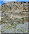 J2105 : Mud, gravel and sand deposits in the cliff face east of Templetown by Eric Jones