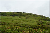 SX5048 : Slope above Wembury Point by N Chadwick
