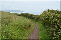 SX5048 : South West Coast Path by N Chadwick