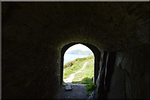 SX4448 : Queen Adelaide's Grotto by N Chadwick